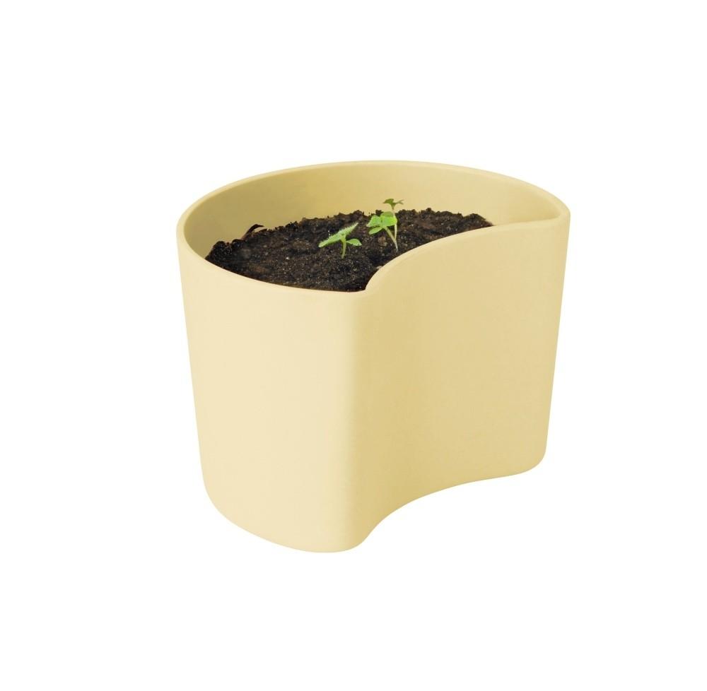 RIG-TIG YOUR TREE Blumentöpfe mit Samen gelb