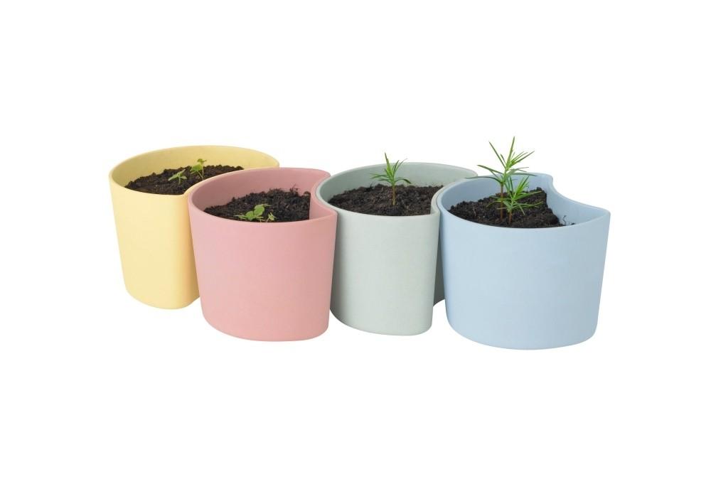 RIG-TIG YOUR TREE Blumentöpfe mit Samen grün