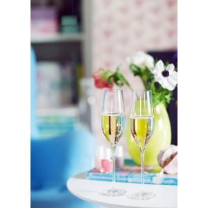Holmegaard Cabernet Champagnerglas 6er Set 29cl