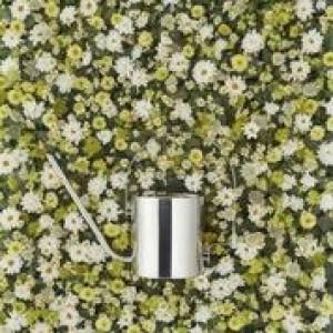 Stelton Original Blumengießkanne 1700ml